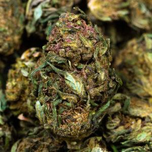 Light mary cbd cannabis legale